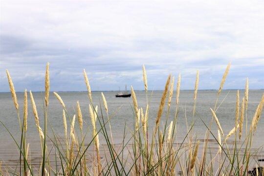 Peaceful Northsea Sylt