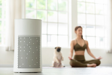 Fototapeta Air purifier in cozy white Living room for filter and cleaning removing dust PM2.5 HEPA at home with woman exercise yoga with dog in background,for fresh air and healthy life,Air Pollution Concept obraz