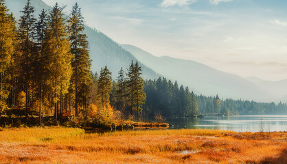 Wonderful nature background. Awesome sunny landscape in the mountains. Majestic Pine trees under sunlit. fantastic alpine highlands with amazing lake in sunset. Beauty in the world