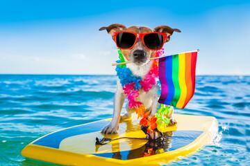Photo sur Plexiglas Chien de Crazy gay pride surfer dog at the ocean