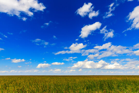 The open landscape of the Everglades in south Florida.