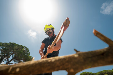 From below of fireman in protective uniform cutting branch with ax in wood on background of blue sky