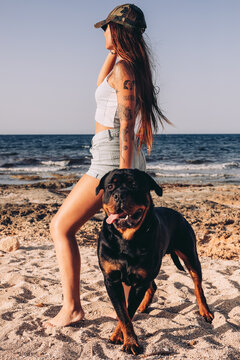 Positive young woman looking away in casual clothes and cap standing on sandy beach with Rottweiler dog while spending time on sunny day in summer