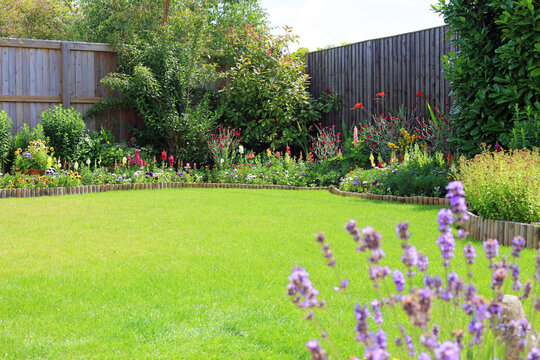 Colourful flower and shrub border in a home garden.