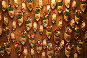 Tulips in wooden shoes, Netherlands