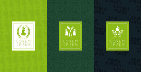 premium and healthy food poster with set icons
