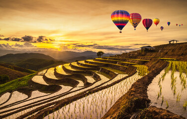 Colorful Hot Air Balloons of Pa Bong Piang terraced rice fields in sunset, Mae Chaem, Chiang Mai in Thailand