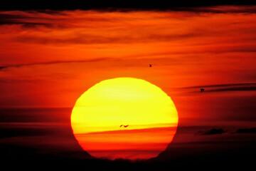 Fond de hotte en verre imprimé Rouge Coucher de soleil sur la Côte d'Opale, plage d'Hardelot en France