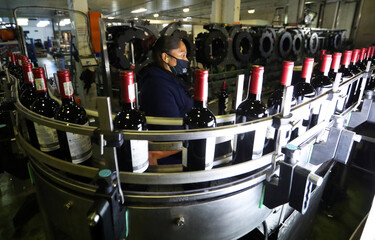 A worker checks bottles of wine coming out of a production line at Nederburg Wine Estate in Paarl