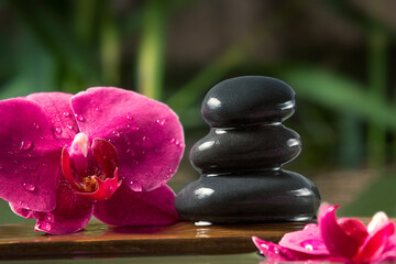 Black zen stones and pink orchids on a wooden plank on the surface of the water. SPA, relaxation, meditation concept