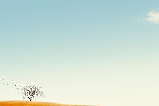 USA, Michigan, Lone tree against blue sky