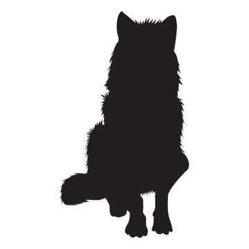 silhouette of sitting wolf
