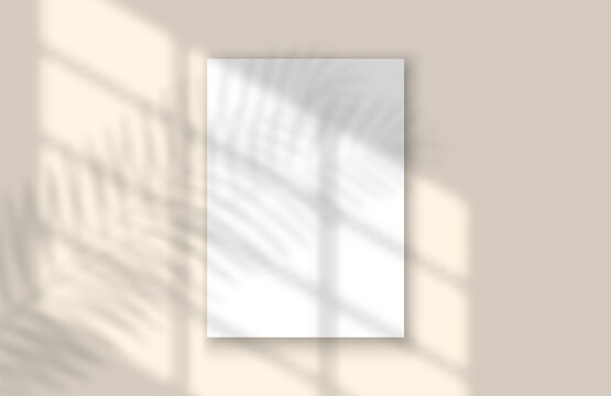 Window and Leaf Realistic Shadow Mock Up Template. Tropical leaf and light from window overlay mockup for social media, banners and advertising.