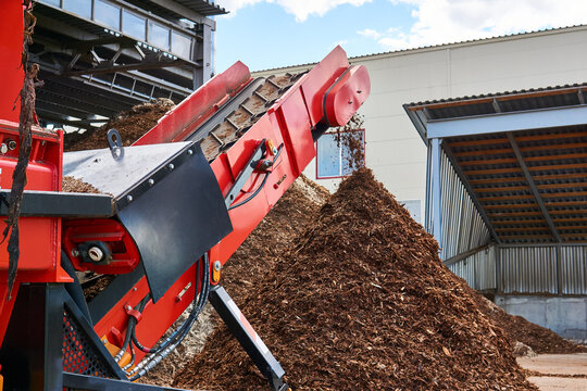 conveyor of industrial woodchipper producing wood chips
