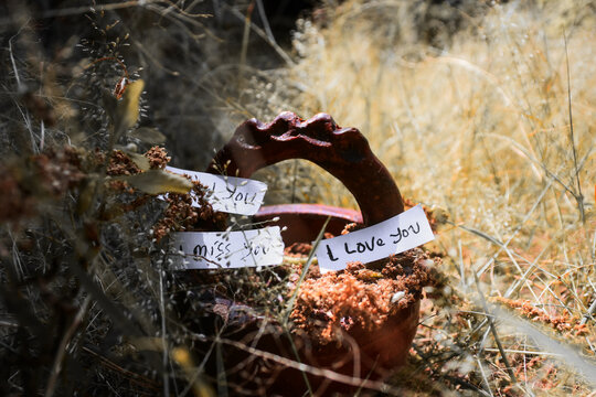 Close-up Of Text On Plant At Field. I Love You, I Miss You, And I Need You Words