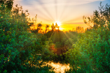 Wall Murals Yellow Lake water sunset and sun rays on nature landscape with sunset sky