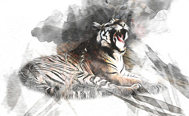 tiger art illustration color vintage grunge retro