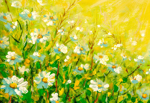 Original oil painting Beautiful floral background with chamomile flowers
