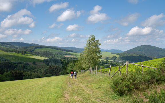 Sauerland region close to Winterberg with a small hiking trail, Germany