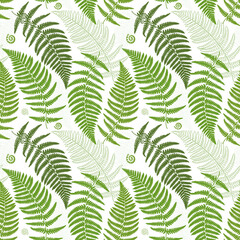 Seamless pattern with fern leaves. Exotic green plants
