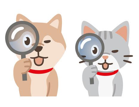 虫眼鏡を覗く犬と猫