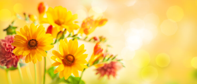 Beautiful autumn flowers on yellow blurred background. Dahlia, daisy,  sunflowers. Panorama, banner with copy space