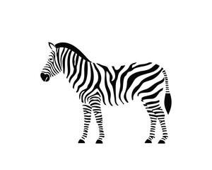 Fototapeta Zebra logo. Isolated zebra on white background