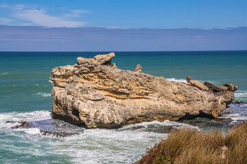 Frog Rock, near Mount Gambier, South Australia, is named because it looks like a frog.