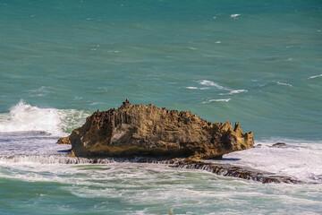 Rhino Rock, near Mount Gambier, South Australia, so named because it looks like a rhino.