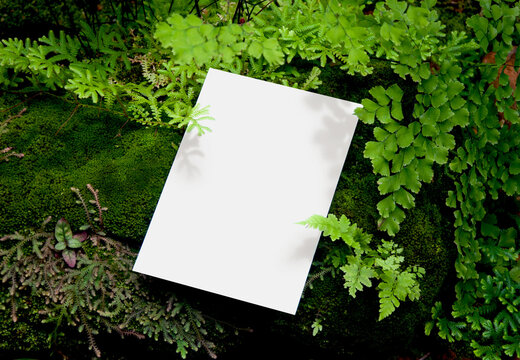 Invitation Mockup. Top view blank card on greenery background with clipping path.