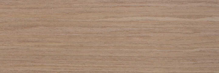 New natural oak veneer background in gentle light beige tone. Natural wood texture, pattern of a long veneer sheet.