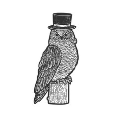 Owl bird in top cylinder hat sketch engraving vector illustration. T-shirt apparel print design. Scratch board imitation. Black and white hand drawn image.