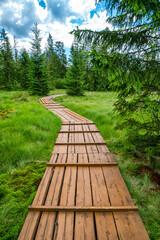 Education trail through bogland in Slana voda, Slovakia
