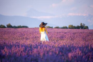 Photo sur Plexiglas Lavande provence countries lavender fields and sunflowers region of france