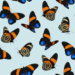 Vector pattern with high detailed vivid butterfly