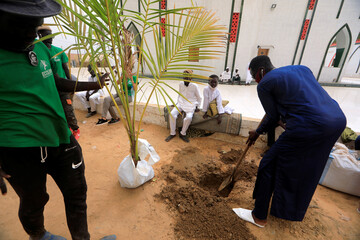 Local activists prepare to plant a tree in front of the divinity mosque in Dakar