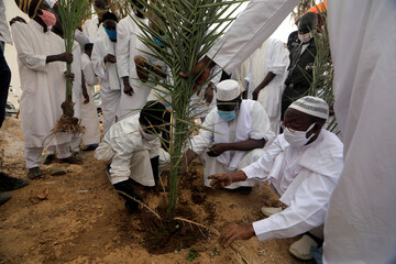 Imam plants a tree in front of the divinity mosque in Dakar