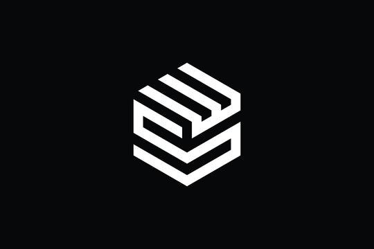 Minimal Innovative Initial WS logo and SW logo. Letter SW WS creative elegant Monogram. Premium Business logo icon. White color on black background