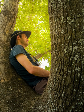 Casual guy relaxing on the tree branch in a park on a sunny day