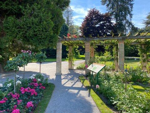 Italian Rose Garden or Italienscher Rosengarten (Flower Island Mainau on the Lake Constance or Die Blumeninsel im Bodensee) - Constance, Germany / Konstanz, Deutschland