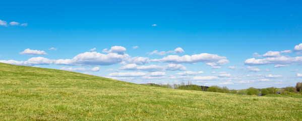 Green field and sun against a blue sky with clouds. The nature of Belarus. A beautiful place to travel and relax with your family. Can be used as a picture for interior decoration.