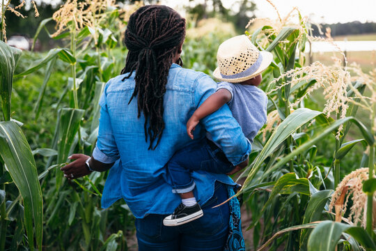 Rear view of mother carrying her son through corn field