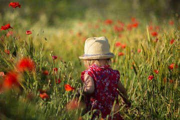 little girl in a field of poppies