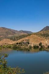 Poster de jardin Desert de sable Beautiful Panoramic view of The Valley of the River Douro, Portugal - Port Wine Vineyards Region with Man-made Terraces on Green Hills Slopes