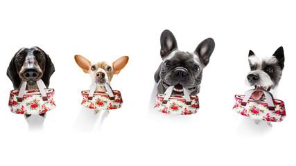 Foto op Plexiglas Crazy dog sale shopping dogs mall