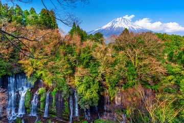 Wall Mural - Fuji mountain and Shiraito waterfall in Japan.