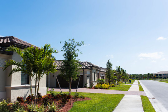 Luxurious real estate street view showing the tropical palm trees and nice landscaping in an upscale South Florida neighborhood and retirement community.