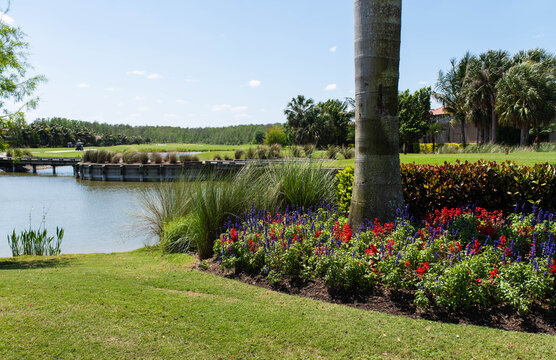 Beautiful landscaping and lush flowers at golf course community in South Florida.