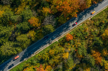 Wonderful colors of the autumn forest crossed by a diagonal asphalt road with driving cars.