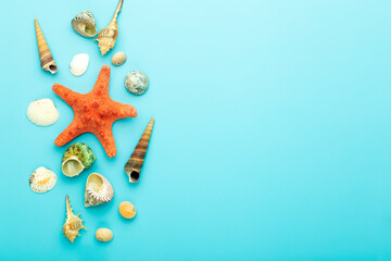 Sea (ocean) background. Seashells on a blue background. Rest, relaxation, sea, ocean, summer concept.